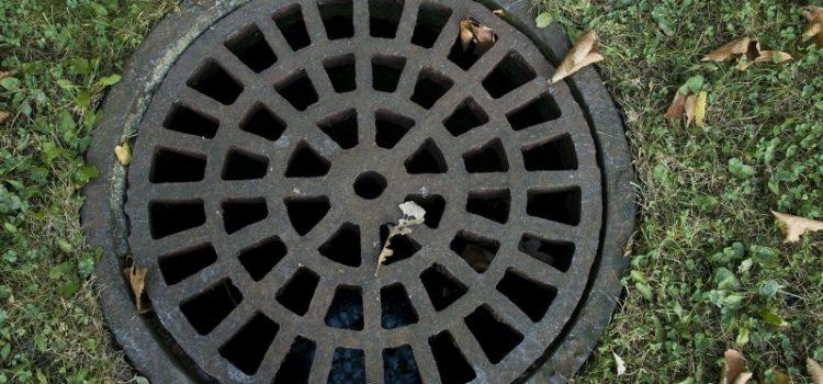 Buus Anlægsgartner tilbyder professionel kloakservice til favorable priser