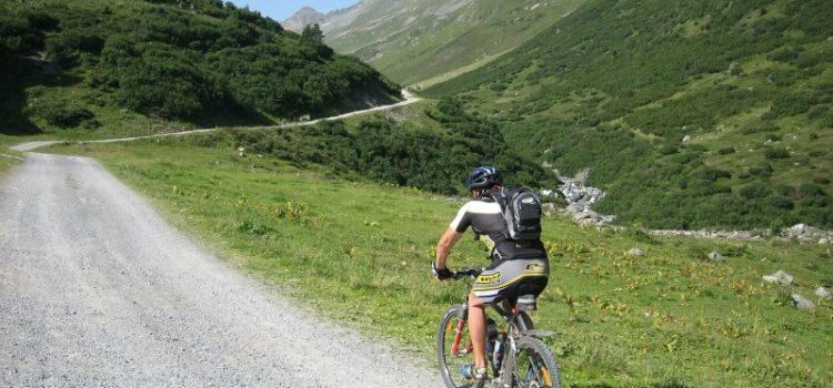 Sjov og sikker mountainbike-kørsel med mtb rygskjold